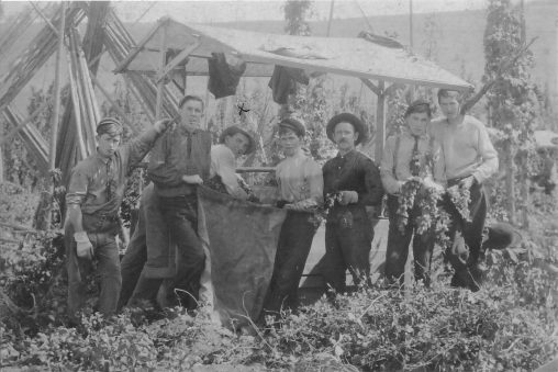 CNY Hops: The Birth, Death, and Rebirth of an Industry